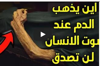 بالفيديو .. هل تعلم اين يذهب الدم عند موت الانسان ..!