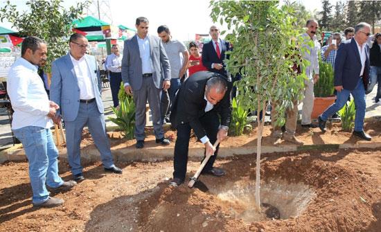 الأمانة تطلق حملة سفوح عمان الخضراء
