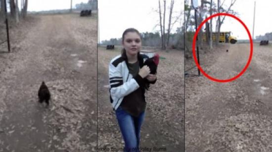 بالفيديو.. ديك وفي يستقبل صديقته يوميا عند عودتها من المدرسة