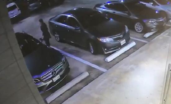 بالفيديو : لص يفشل في سرقة امرأة