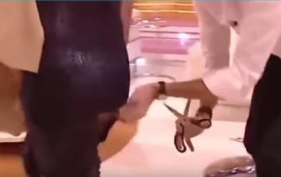 بالفيديو.. مذيع ينتقم من ضيفته بتمزيق فستانها على الهواء مباشرة