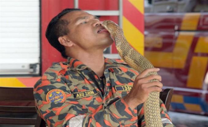 وفاة ماليزي مشهور بتقبيل الثعابين بلدغة كوبرا (فيديو وصور)