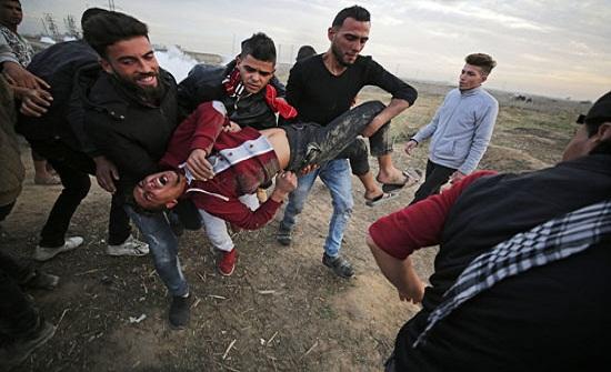 15 جريحا برصاص الاحتلال في قطاع غزة