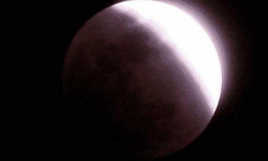 شاهد: خسوف القمر يعيد تداول فيديو المغامسي بعد ٨ سنوات