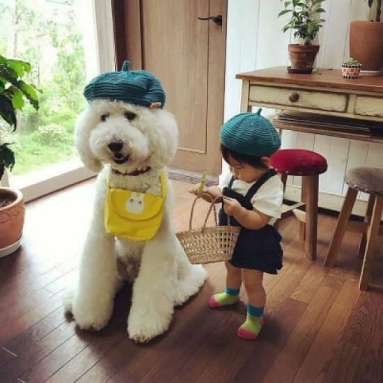 """الطفلة اليابانية """"مامي"""" وصديقها العزيز """"ريكو"""" يحصدون الآلاف من المعجبين على إنستاغرام"""