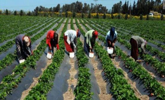 اداة قياس لزيادة الإنتاج الزراعي في الدول التي تعاني من ندرة المياه