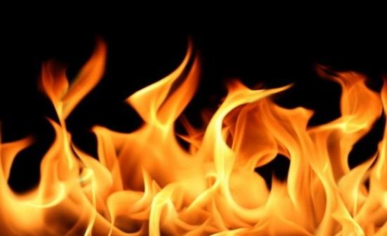 إخماد حريق أعشاب جافة وأشجار حرجية ومثمرة في اربد