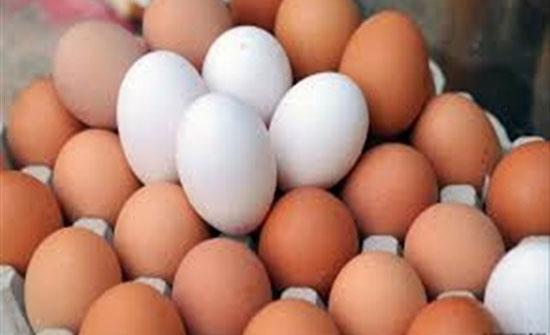 احذر تناول البيض لهذه الأسباب