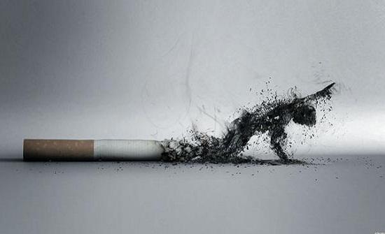 """سيجارة واحدة يوميا تكفي """"لزيادة مخاطر الإصابة بأمراض القلب"""""""