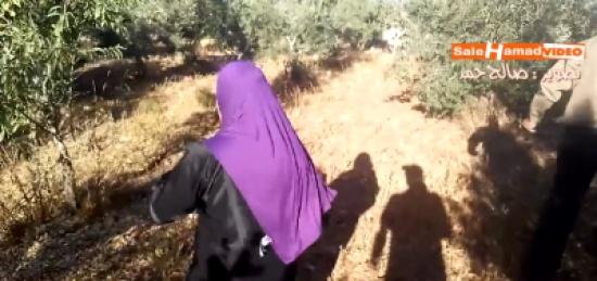 فيديو مؤثر| والدة شهيد فلسطيني ارتقى باشتباكٍ مع الإحتلال تبحث عنه في حقول الزيتون