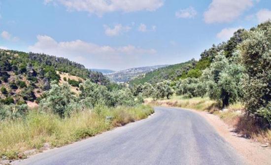 2ر1 مليون دينار كلفة توسعة طريق وادي الطواحين