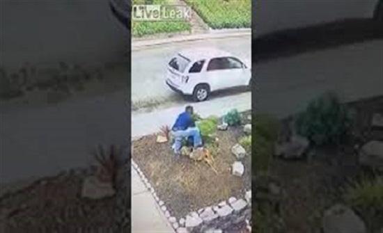 رجل يسرق شيئا غريبا من جاره بوضح النهار (فيديو)
