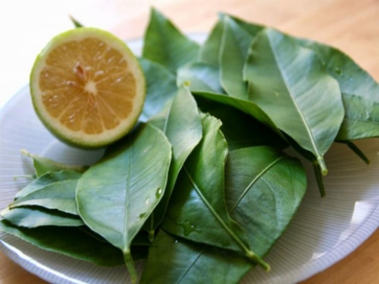 تعرف على الفوائد الصحية المتعددة لأوراق الليمون