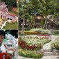 صور: منزل مايكل جاكسون للبيع بـ100 مليون دولار