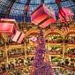 بالصور.. أجمل شجرات لعيد الميلاد حول العالم