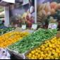 مصدر : الاردن يوقف التصدير إلى السوق اليمني