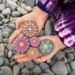 بالصور.. فنان أسترالي يصنع لوحات رائعة على الأحجار بألوان زاهية