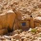 صور: المنازل الأكثر غرابة في العالم