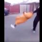 فيديو| شباب يعتدون على امرأة مسنة دون رحمة!