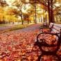 الخريف بأجمل اللقطات
