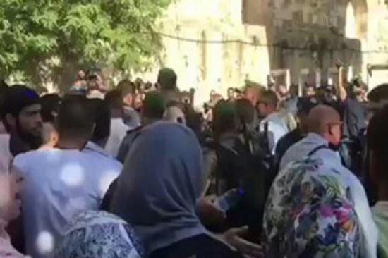 فيديو مؤلم جدًا: مجموعة من جنود الاحتلال وهم يهاجمون المرابطات عند أبواب المسجد الأقصى