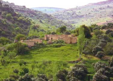 امين عام سلطة وادي الاردن يبحث المخطط الشمولي لتنمية وتطوير منطقة وادي عربة