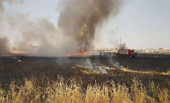 الدفاع المدني في اربد يخمد حريق اعشاب جافة