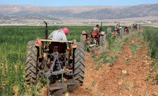 انتعاش القطاع الزراعي في الكرك