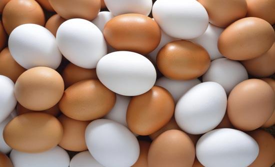 حماية المستهلك تدعو لعدم شراء البيض من الباعة المتجولين