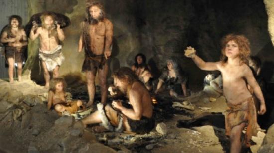 كيف تم اكتشاف أن اجتماع الرجل بالمرأة يؤدي للإنجاب ؟