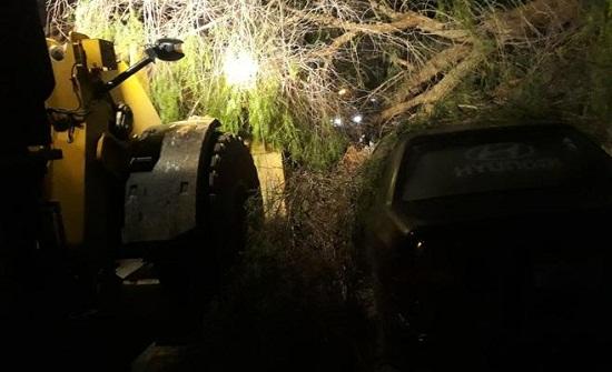 بالصور : الرياح تتسبب بسقوط أشجار ولوحات واضرار للمركبات