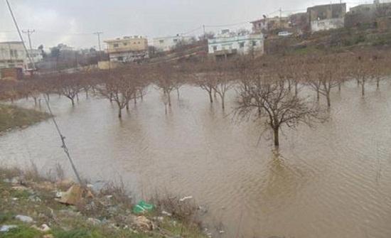 عجلون : مطالب بمعالجة تجمع برك الامطار في عبين