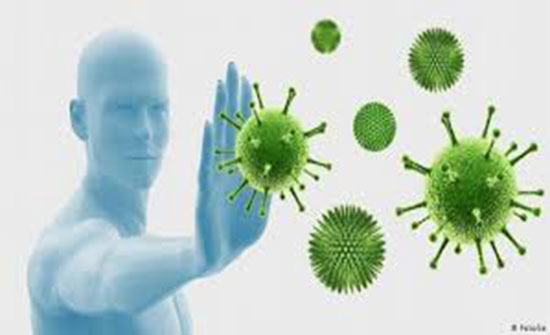 لتقوية المناعة.. جرّبوا هذه العلاجات الطبيعية!