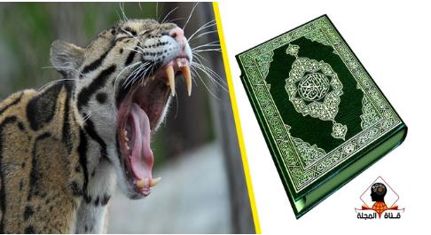 اكتشاف عن الحيوانات المفترسة أذهل العلماء وذكره القرآن بالتفصيل