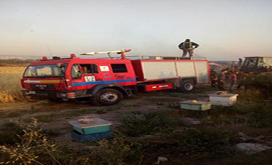 إخماد حريق شب بـ400 دونم بمنطقة الباقورة