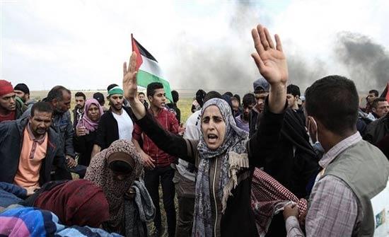 كندا تدعو لتحقيق فوري ومستقل حول أحداث غزة