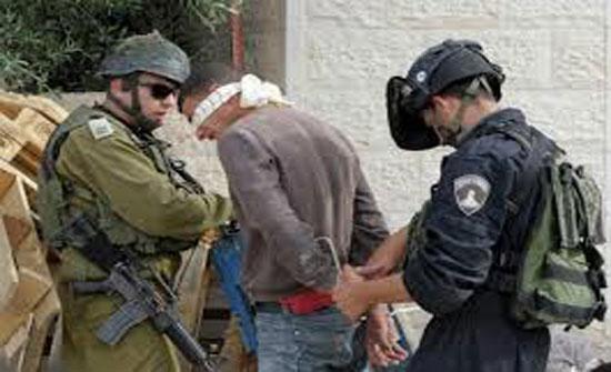 الاحتلال الاسرائيلي يعتقل 11 فلسطينيا بالضفة الغربية