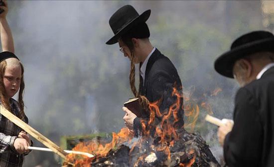 مستوطنون يحرقون مئات من أشجار الزيتون شمالي الضفة الغربية
