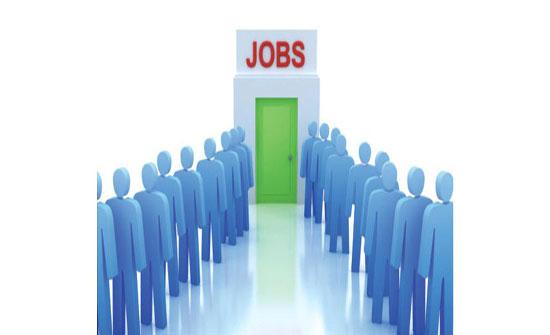 اربد الاعلان عن فرص عمل للذكور والإناث