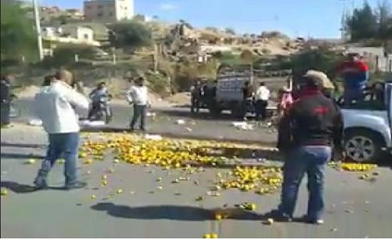 فيديو : مزارعون يلقون الحمضيات بالشارع بسبب انخفاض اسعارها
