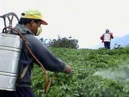 ورشة في الزرقاء عن الاستخدام الآمن للمبيدات