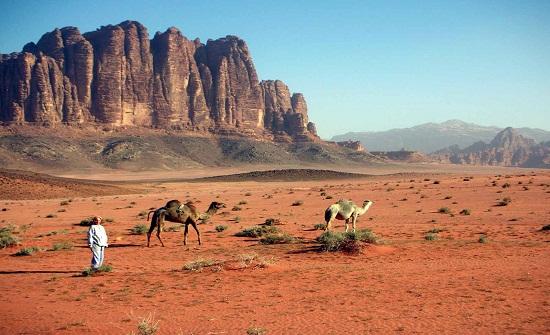 وفاة وإصابة اخر جراء تعرضهما للتيه  في صحراء رويشد