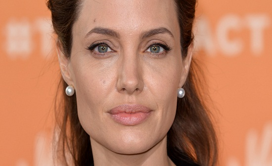 وزير الخارجية يستقبل أنجلينا جولي