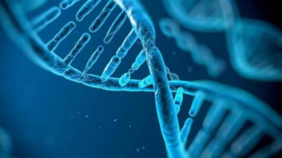 خلايا البشر تبقى نشطة بعد الوفاة !