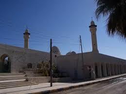 لجان مجلس محافظة الكرك تتفقد مواقع اثرية في المزار الجنوبي