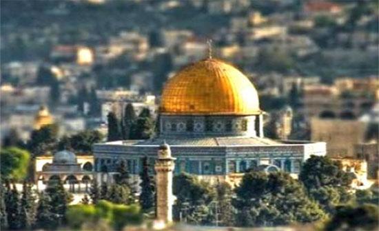 المؤرخ المجالي يحاضر حول الوعود الغربية لمنح فلسطين لليهود
