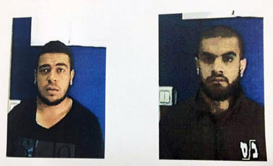 إسرائيل تحتجز شقيقين للاشتباه بتواصلهما مع تنظيم الدولة