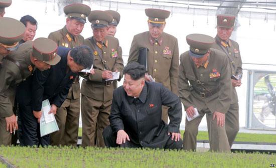 كيم جونغ أون.. من طفل ودود إلى زعيم لا يرحم