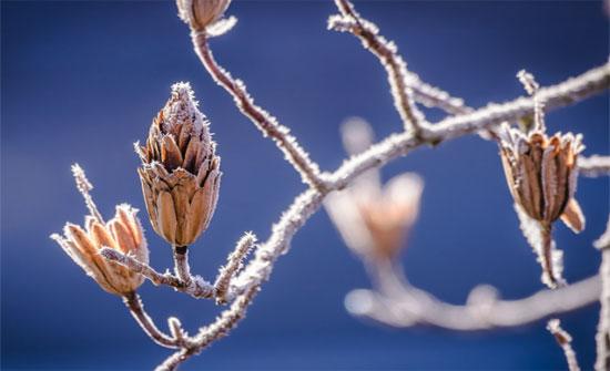 مربعانية الشتاء تشارف على الرحيل.. ومخزون السدود دون الثلث