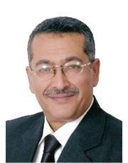 المدمنون على شتم العرب!